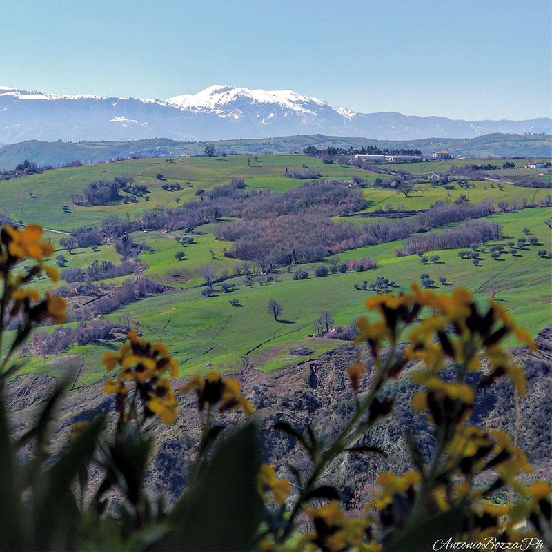 foto panoramica azienda agricola  © Antonio Bozza Ph